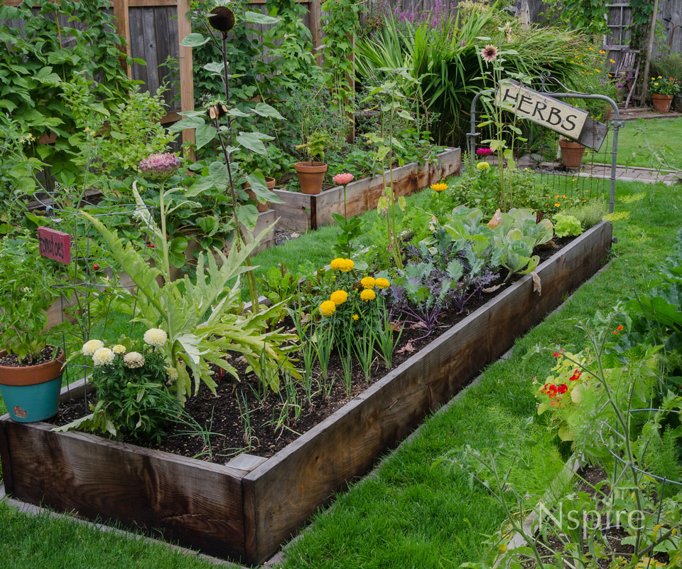 Do it yourself garden beds nspire magazine for Do it yourself garden